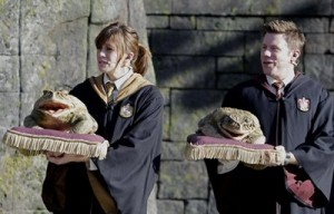hogwarts choir 300x192 New Photos from HarryPotterland!