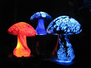 glowing mushrooms 300x225 A Z Day 18: Renaissance Faire