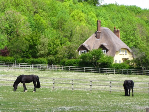 horse and cottage England Day 8 Part 1: Ten Mile Bike Ride from Salisbury to Amesbury