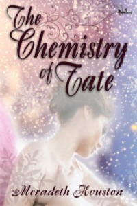 chemistry of fate Wednesday Writer's Workspace Welcomes Meradeth Houston